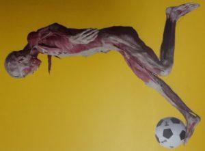 Real Bodies - Lisboa