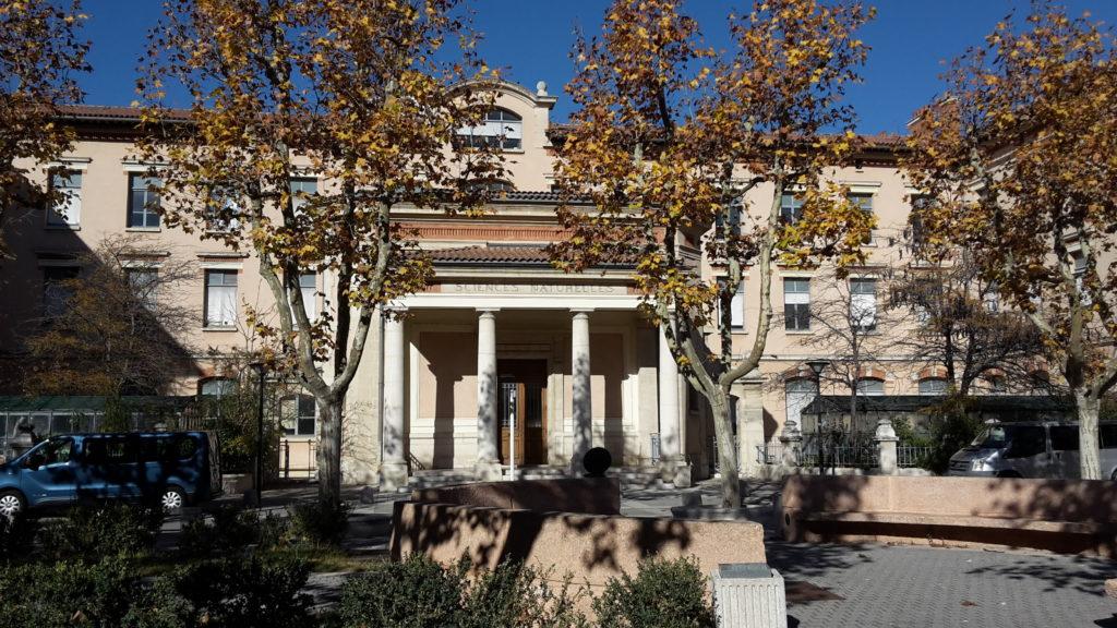 Fac Marseille - Sciences - Naturelles - DIU Posturologie Clinique - Anthony Carreira
